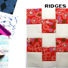 Ridges Block by Amy Ellis for Modern Quilt Block Series